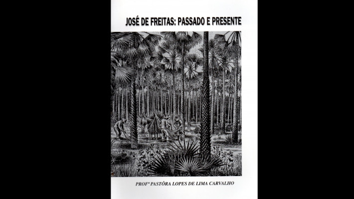 DIÁRIO: José de Freitas: passado e presente